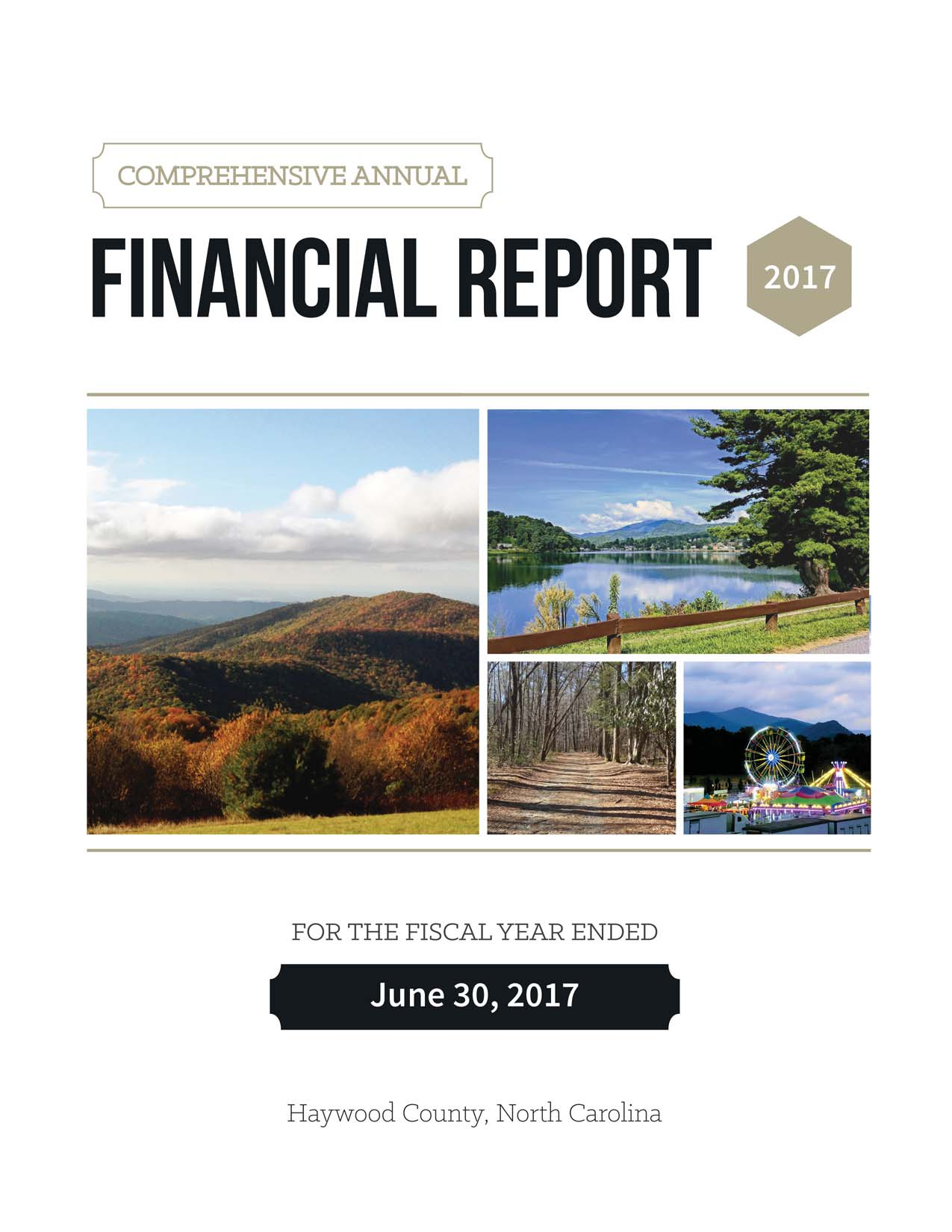 Comprehensive Annual Financial Report 2017 Cover Opens in new window